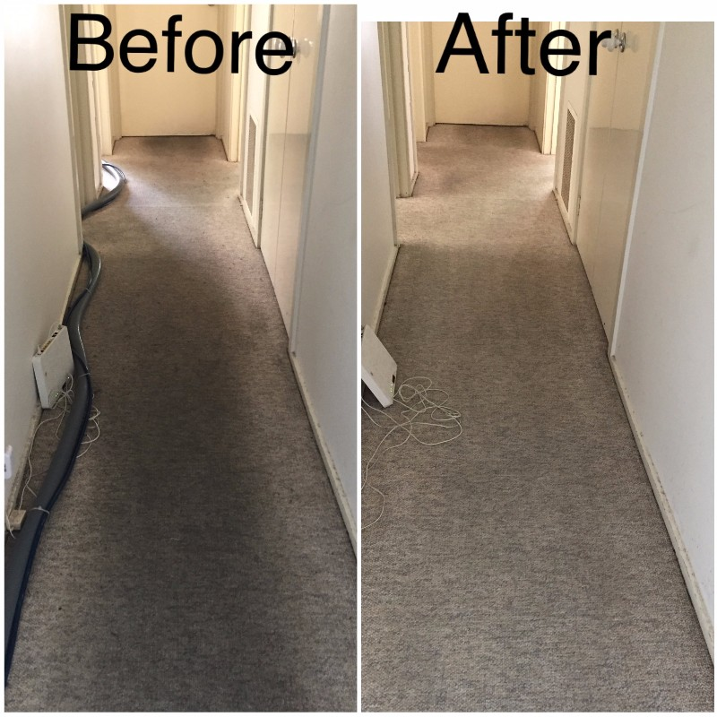 carept-steam-cleaning