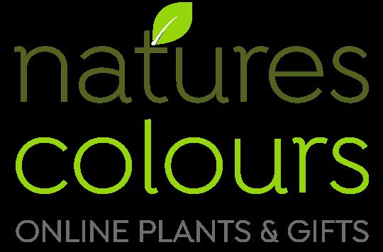 natures-colours-logo